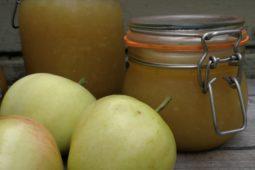 Omenahillo ja sen ohje