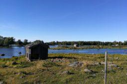 Bodvattnet runt – luontopolku Svedjehamnissa uudistuu