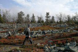 Pieni Vetur – pienennetty islantilaisneule esikoiselle