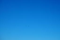 Lintuja tarkkailemassa Söderfjärdenin meteoriittikraatterissa