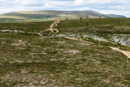 Nuts Ylläs Pallas 2021,Hetta-Pallas 66 km